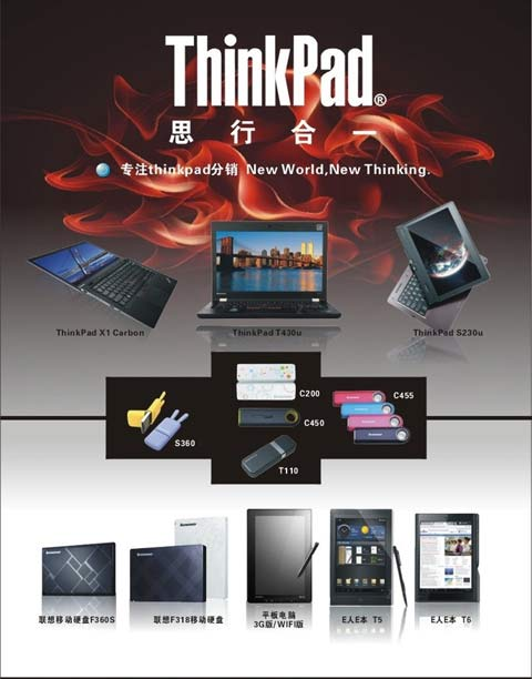 ThinkPad DM